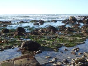 Pacific Ocean-San Diego, CA